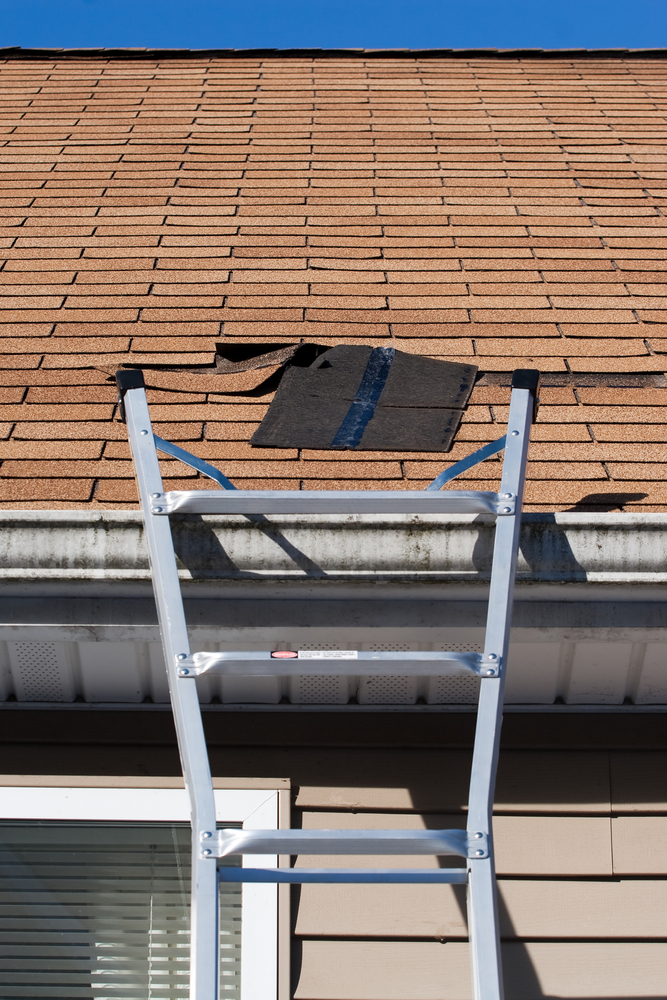 Replacing a blown out roof shingle